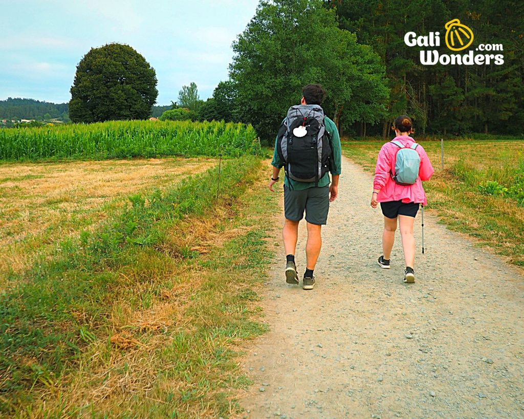 camino de santiago all you need to know 10