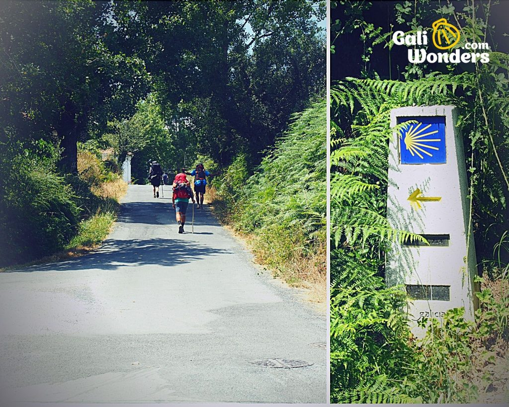 camino de santiago all you need to know 5